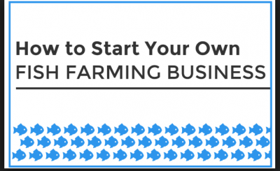 start fish farming business
